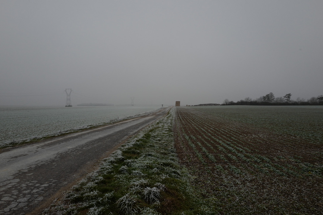 Frosted winter field with farm track running to the horizon